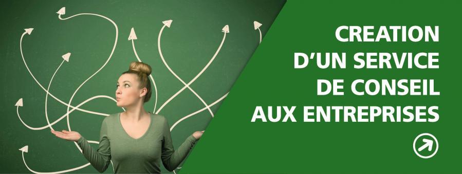 CREATION D'UN SERVICE DE CONSEIL AUX ENTREPRISES