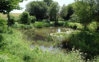 Conteville (Eure) Protection et gestion des mares